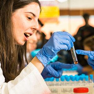 Biotecnologia (2º Semestre)