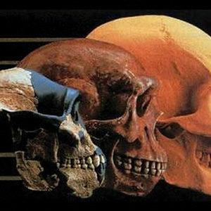 Evolução: de 1859 até os dias de hoje (CN2)