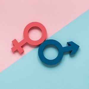 Sexualidade: do indivíduo à sociedade (CN4)